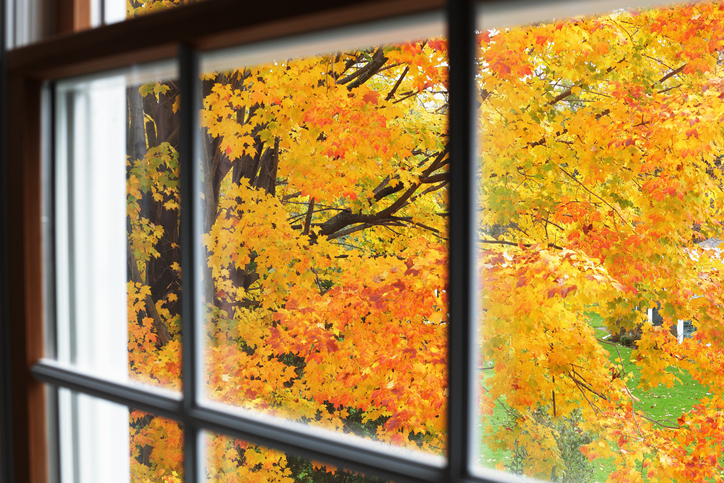 Window during fall months
